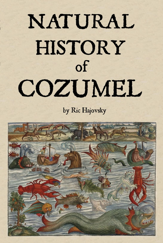 book cover of Natural History of Cozumel